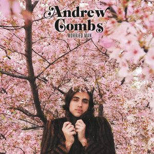Too Stoned to Cry by Andrew Combs