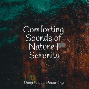 Comforting Sounds of Nature | Serenity