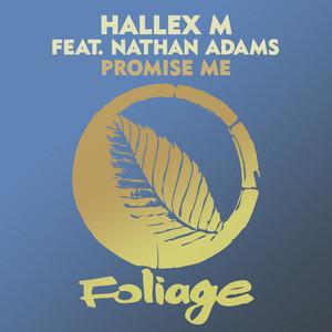 Hallex M, Nathan Adams – Promise Me (Studio Acapella)