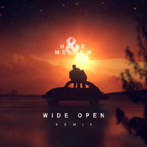 Wide Open (Remix)
