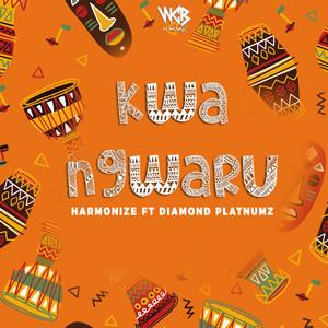 Kwa Ngwaru cover art