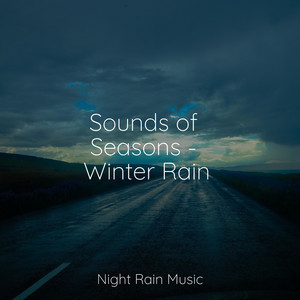 Sounds of Seasons - Winter Rain