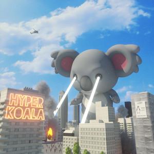 Hyper Koala