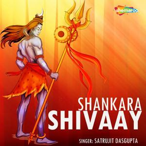 Shankara Shivaay cover art
