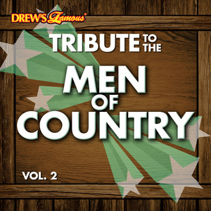 Tribute to the Men of Country Vol. 2 album