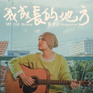 我成長的地方 by Namewee