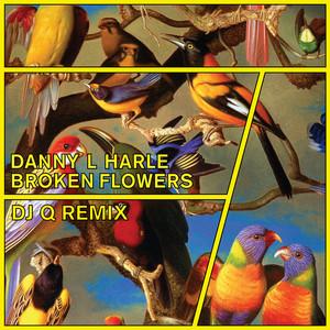 Danny L Harle · Broken flowers (DJ Q Remix)