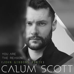 You Are The Reason (John Gibbons Remix)