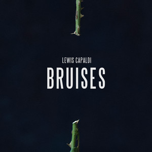 Bruises cover art