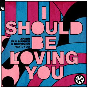 I Should Be Loving You