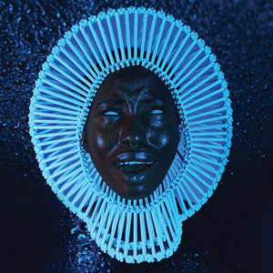 """Awaken, My Love!"" album"