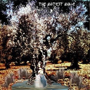 The Whitest Whale album