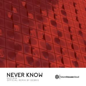 Never Know (Debris Remix)