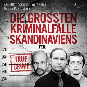 Die größten Kriminalfälle Skandinaviens - Teil 1 Audiobook