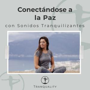 Conectándose a la Paz con Sonidos Tranquilizantes