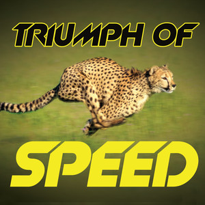 Triumph of Speed album