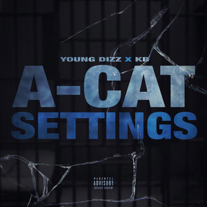 A-Cat Settings
