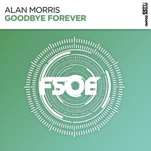 Goodbye Forever - Extended Mix cover art