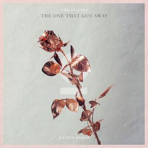 The One That Got Away (Pilton Remix)