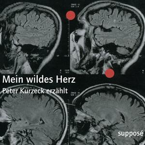 Mein wildes Herz (Peter Kurzeck erzählt) Audiobook