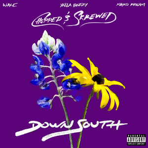 Down South (feat. Yella Beezy & Maxo Kream) [Chopped & Skrewed]