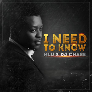I Need to Know (feat. DJ Chase)