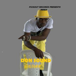Don Sound (feat. Dougie Conscious) [Remix]