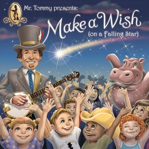 Make a Wish (On a Falling Star)