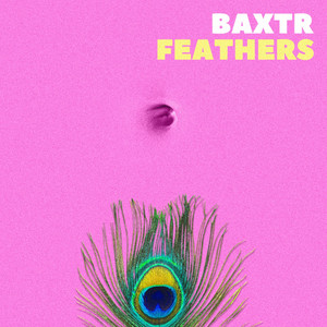 Feathers cover art