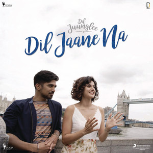 Dil Jaane Na - From