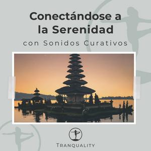 Conectándose a la Serenidad con Sonidos Curativos
