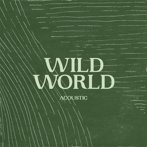Wild World (Acoustic)