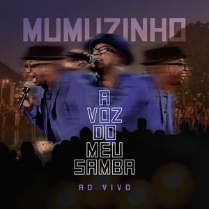 A Voz Do Meu Samba - Ao Vivo album