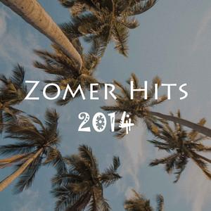 Zomer Hits 2014