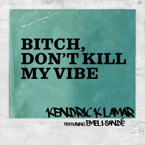 Bitch, Don't Kill My Vibe (Remix)