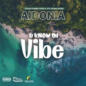 U Know Di Vibe by Aidonia