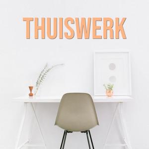 Thuiswerk