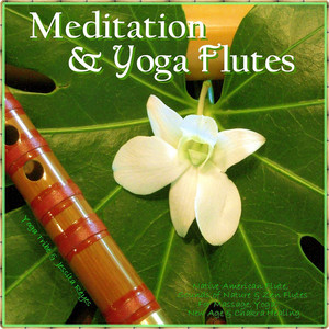 Sounds of Nature Usher in Calm - Native American Flute For Meditation & Sleep cover art