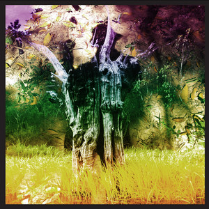 Man Of Oil by Animal Collective