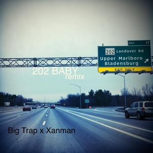202 Baby (Remix)