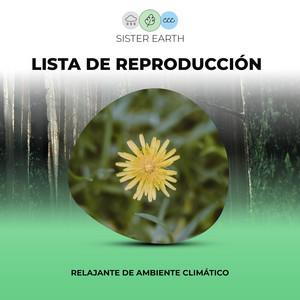 Lista de Reproducción Relajante de Ambiente Climático