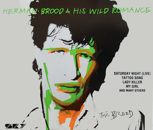 Then She Kissed Me - Live by Herman Brood & His Wild Romance