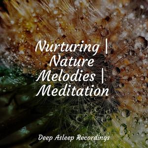 Nurturing | Nature Melodies | Meditation