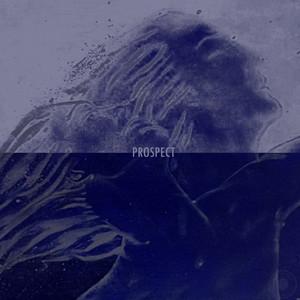 Prospect - Sir Leaks Remix cover art