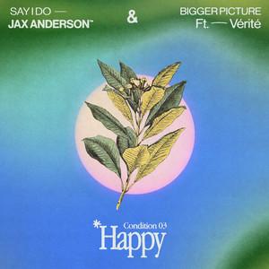 HAPPY: Bigger Picture / Say I Do