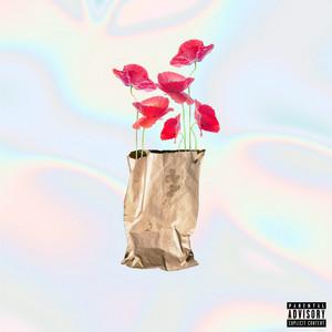 Brown Paper Bag (Maxi)