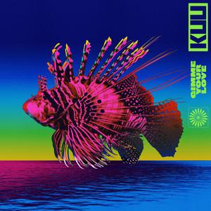KUU, Alex Metric, Riton Feat. Shungudzo - Gimme Your Love