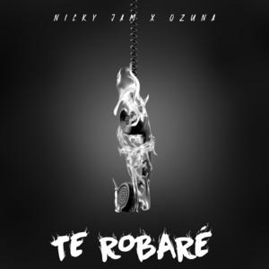Te Robaré