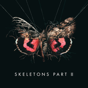 Skeletons: Part 2