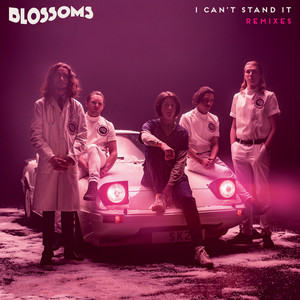 I Can't Stand It (Remixes)